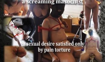 a-screaming-masochist